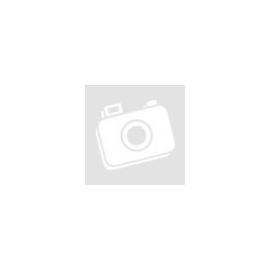 White Delight Kókusztejes fehér csokoládé egész mogyoróval, édesítőszerrel, vegán 80 g
